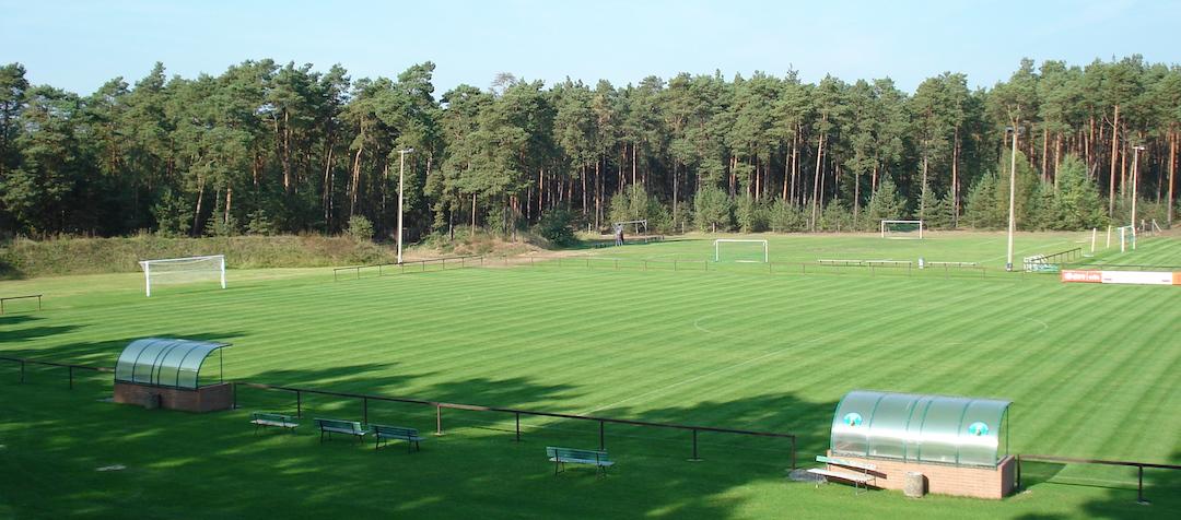 Top gepflegter Rasen im Fichte-Stadion